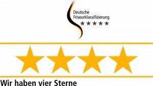 4-STERNE Starschnitt in Pirna, Dresden, Heidenau